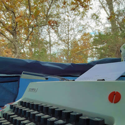 olympia typewriter in the woods